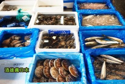 [神奈川橫濱景點]橫濱中央卸賣市場-超低溫鮪魚冷凍庫的南極體驗