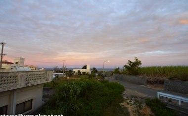 [沖繩]甘蔗田裡的拂曉-沖繩日出