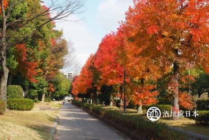 快速規劃廣島市區半日遊-冬陽和煦,散步正好
