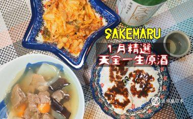 天寶一生原酒 冬季限定絕佳餐中酒 #SAKEMARU一月精選日本酒