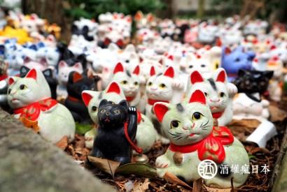 和歌山淡島神社-安胎祈願神社與人偶最後樂園