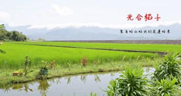 聿犁聯邦農業 光合稻子  花蓮小農聯合品牌  有生命力的好米從產地直送你家餐桌