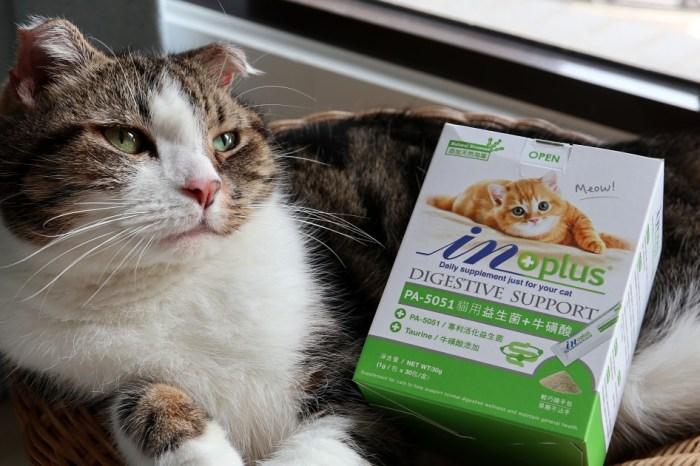 IN-Plus 貓用益生菌保養品 貓咪腸胃道也需要好菌保養 還添加牛磺酸喔!
