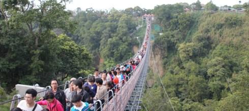 【南投-南投市】猴探井天空之橋微笑天梯