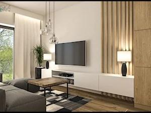 salon ze sciana tv aranzacje