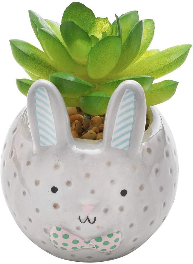 Argos Home Small Bunny Succulent Pot