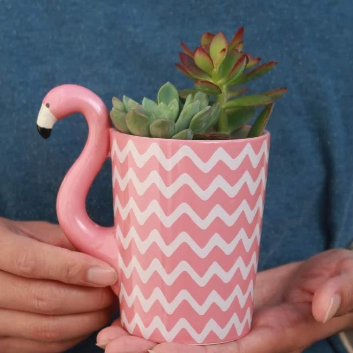 DingaDing Terrariums Flamingo Mug Planter With Choices Of Plants