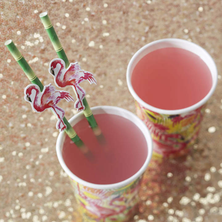 Ginger Ray Tropical Flamingo And Bamboo Paper Party Straws