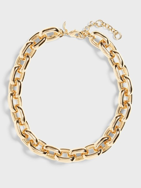 Banana Republic - thick chain necklace