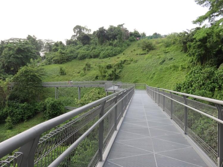《新加坡》健行 The Southern Ridges 南部山脊 百變的花園城市