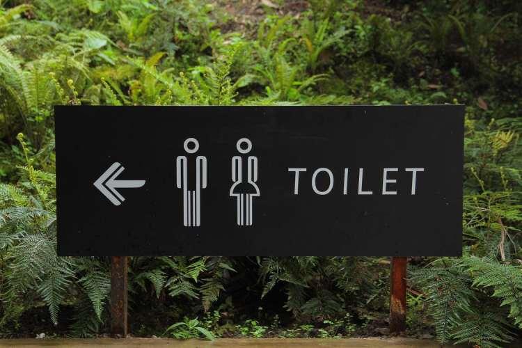 《台灣人看西班牙日常》西班牙語洗手間找廁所