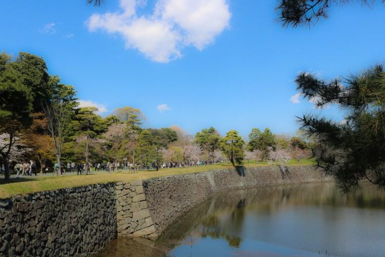 東京賞櫻地點日本皇居值得去嗎?紅葉季呢?預約與限定開放常見問答