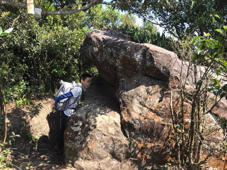 內湖龍船岩 開眼山 白石湖山 大邱田山登山步道一圈 太原始了不是台北市