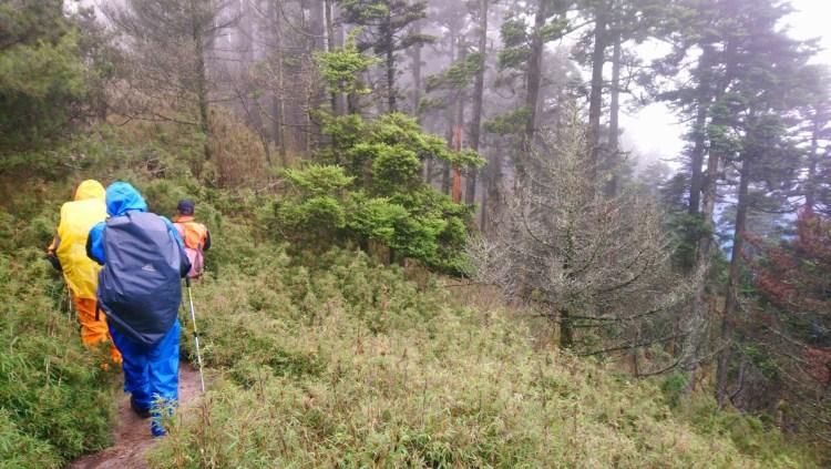 陽明山不是很簡單嗎?大自然永遠殘酷之登山健行警覺性