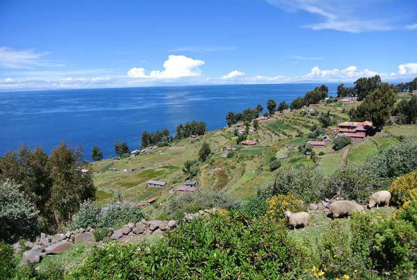 祕魯普諾蘆葦島一日遊。的的喀喀湖 part3 品嘗島上純樸美味