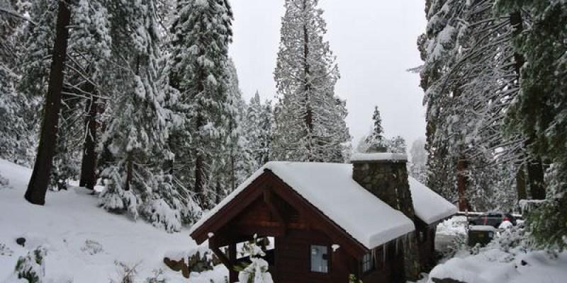 《美國加州》Sequoia & kings Canyon National Park。Day1。雪白的世界