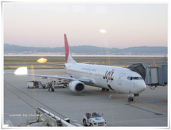 《日本》賞花遊日本 Day5 關西空港返回桃園機場面對現實啦
