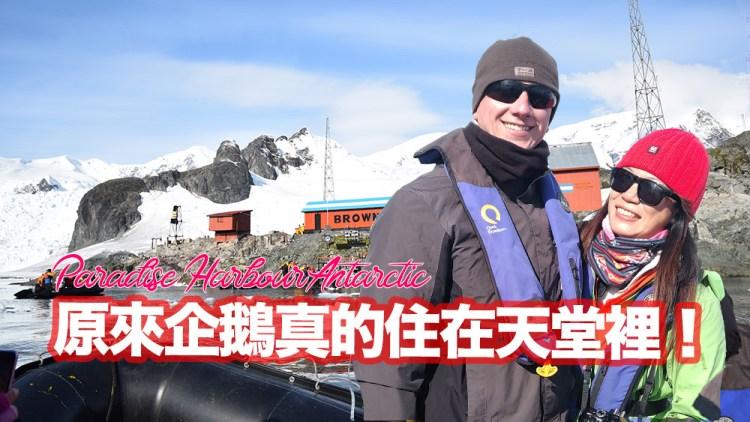原來企鵝真的住在天堂裡!| 波希去南極#3 | Paradise Harbour Antarctica | 波希太太 MStravel
