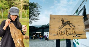 宜蘭景點推薦》斑比山丘Bambi Land●台版奈良!來宜蘭和小鹿斑比玩耍 線上預約免排隊免等待 宜蘭景點/宜蘭冬山景點