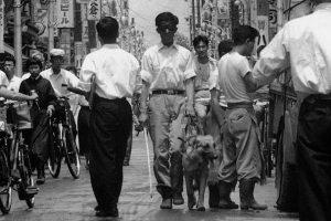 為了摸索導盲犬的訓練法,鹽屋賢一戴眼罩走在街 ( 取自眼伴後援會)