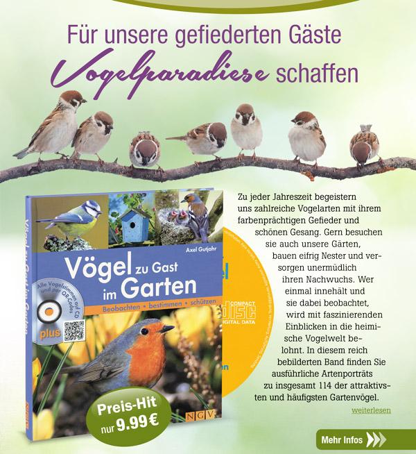 Vögel zu Gast im Garten, inkl. Audio-CD