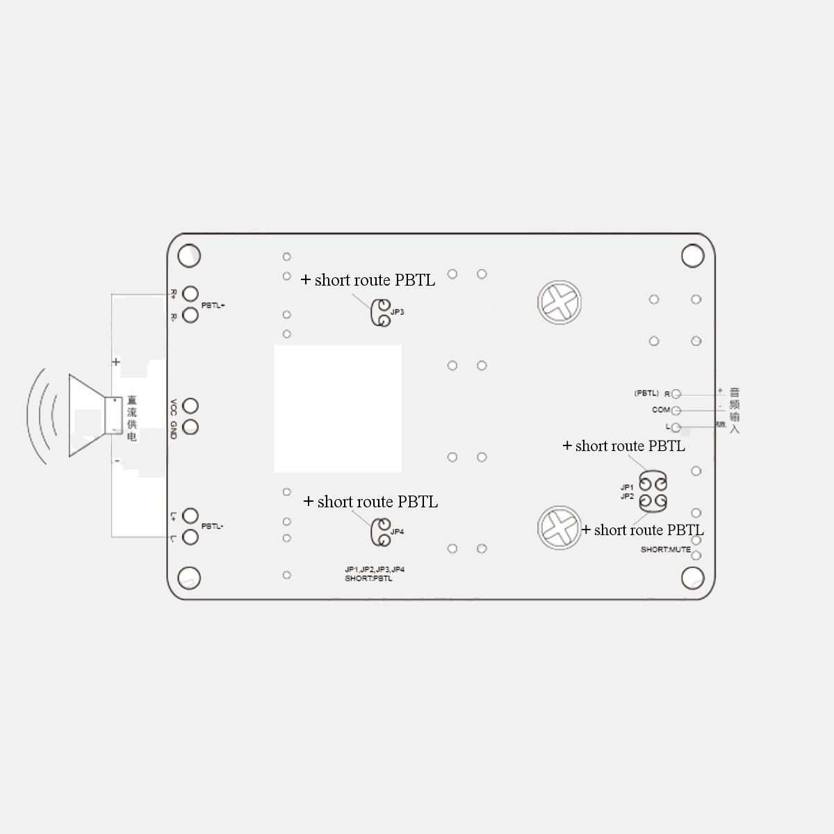 Tpa 2x50w Dual Channel Pbtl 100w Mono Digital