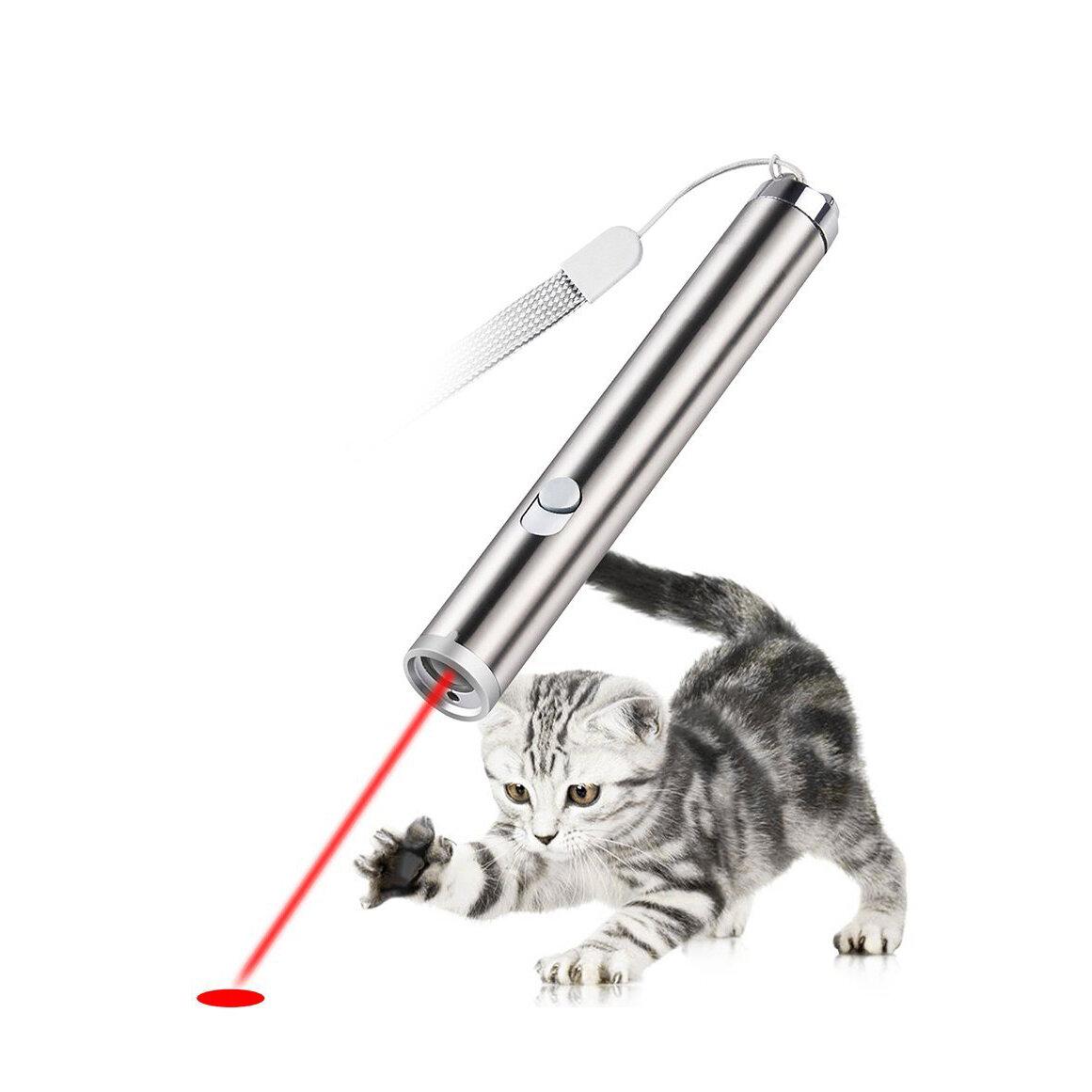 Red Laser Cat