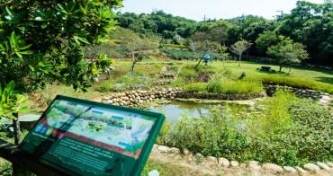 桃園 | 三水水土保持戶外教室:大北坑農村再生社區茶山美境一日遊