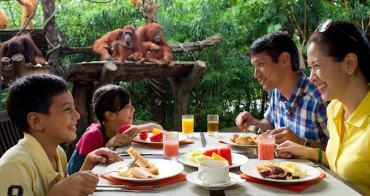 新加坡   3種主題玩出不一樣的親子之旅