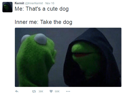 Kermit Memes We Can't Get Enough Of