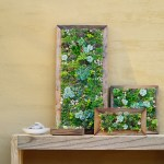 Make Your Own Diy Vertical Succulent Wall Planters Sunset Sunset Magazine