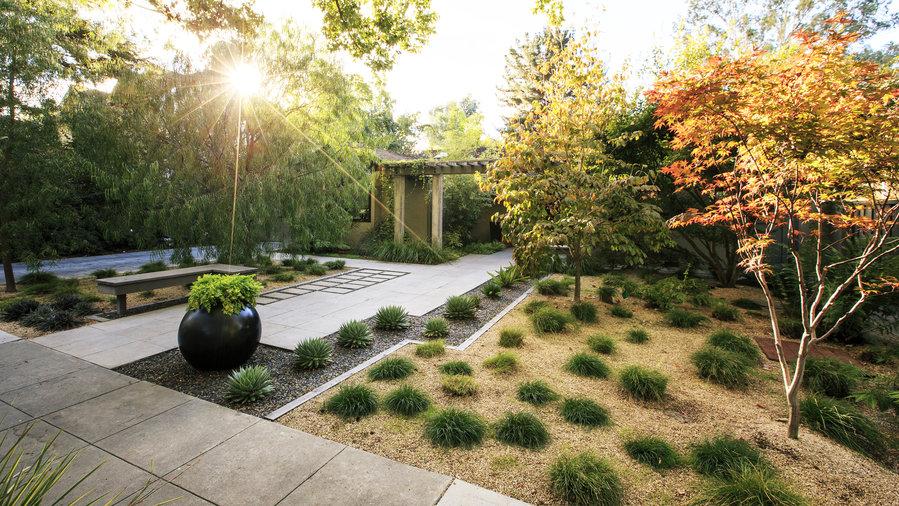 Amazing Backyard Ideas Sunset Sunset Magazine