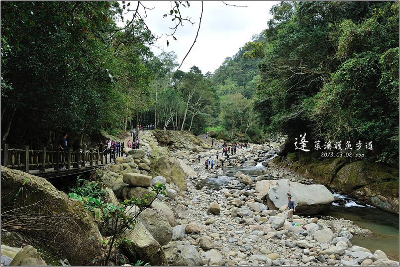 蓬萊溪生態賞魚步道
