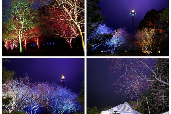 南投旅遊景點:不用出國就看得到櫻花盛況--九族文化村