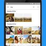 Google-Photos-Gallery-1