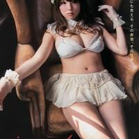 Magazine, Shinozaki Ai, Young Animal Arashi
