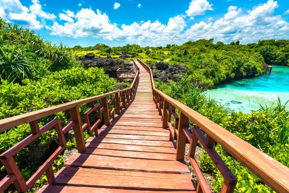 Wooden bridge with blue skies