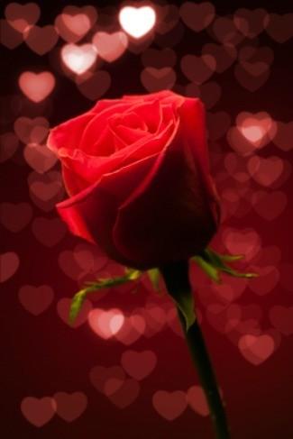 Valentines Day Dance Ideas ThriftyFun