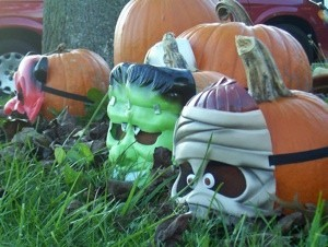 Decorating Pumpkins Without Carving Them