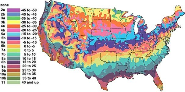 Get Into Your Growing Zone Usda Plant Hardiness Zones Explained Thriftyfun