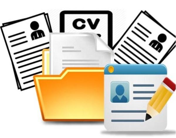Hồ sơ xin việc online cần những gì? Cách tạo hồ sơ xin việc online - Ảnh 2