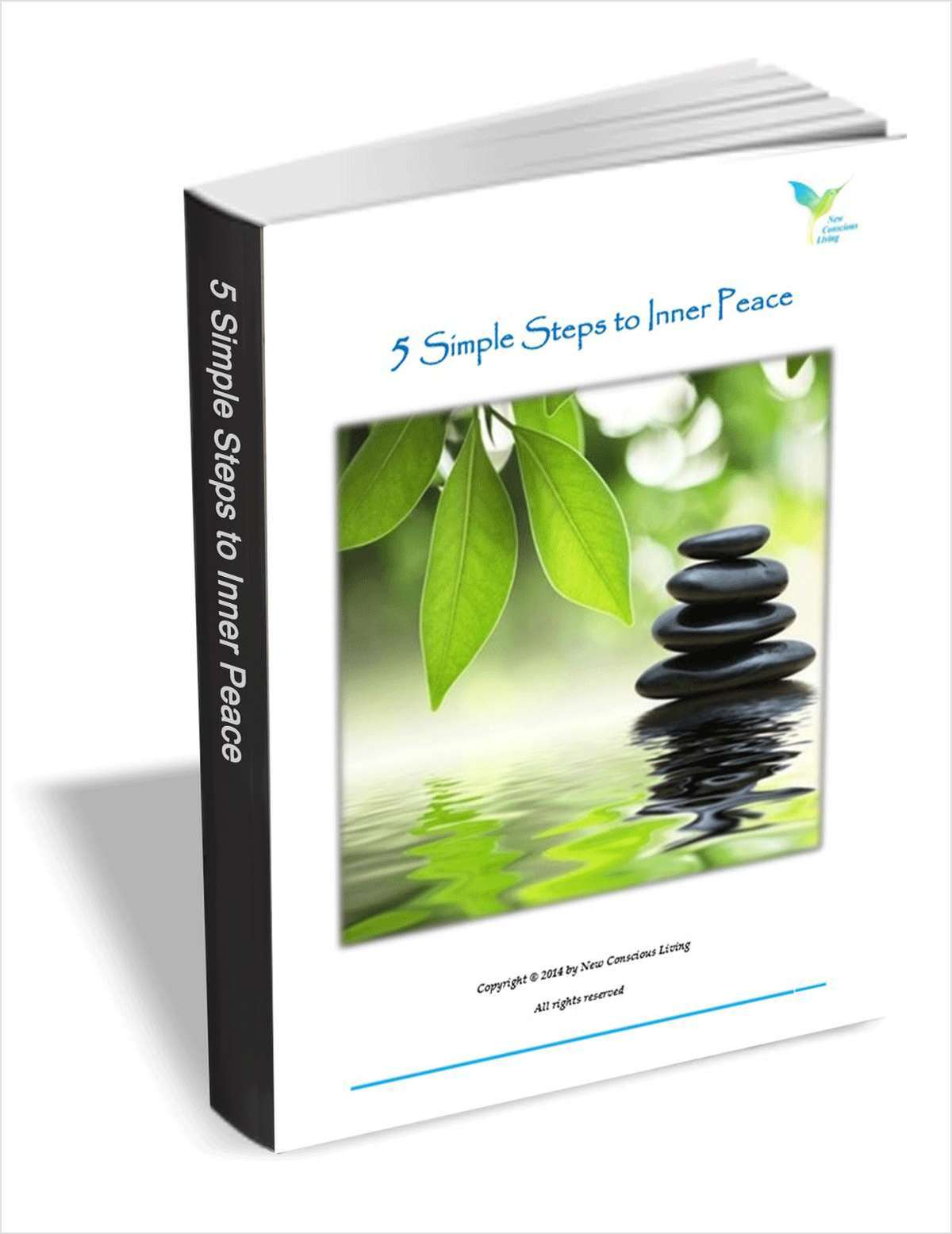 Download 5 Simple Steps to Inner Peace