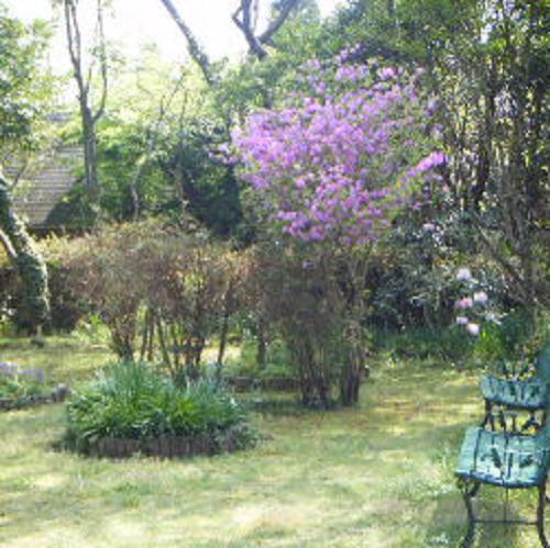ペンション花の木/客室