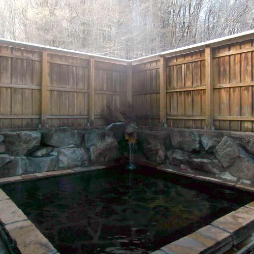 【新幹線付プラン】奥州平泉温泉 しづか亭(びゅうトラベルサービス提供)/客室
