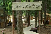 自然樂校 清水國明の森と湖の楽園/客室