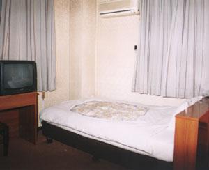 グリーンビジネスホテル/客室