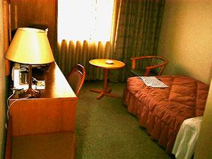 ホテルキャッスルプラザ多賀城/客室