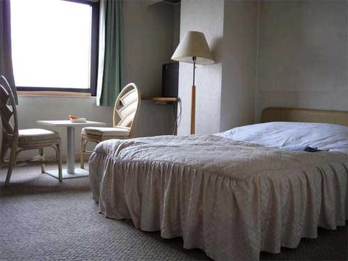 ホテル シヴィックインサヤマ/客室