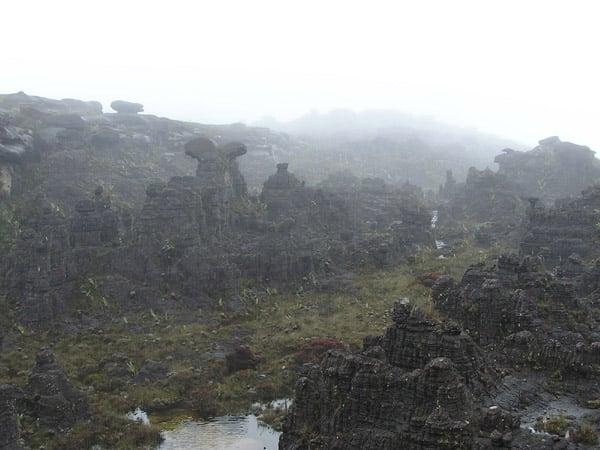 Причудливые скалы Рораймы / Фото из Венесуэлы