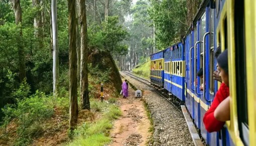 12 Best Things To Do In Coonoor (With Photos) On Your Trip In 2021